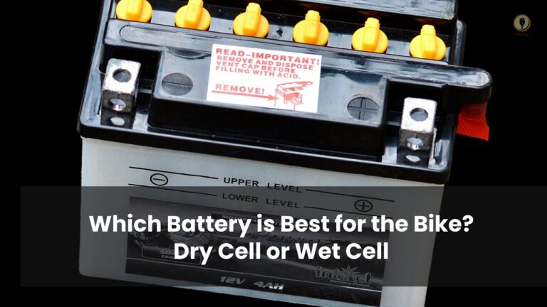 dry cell or wet cell battery